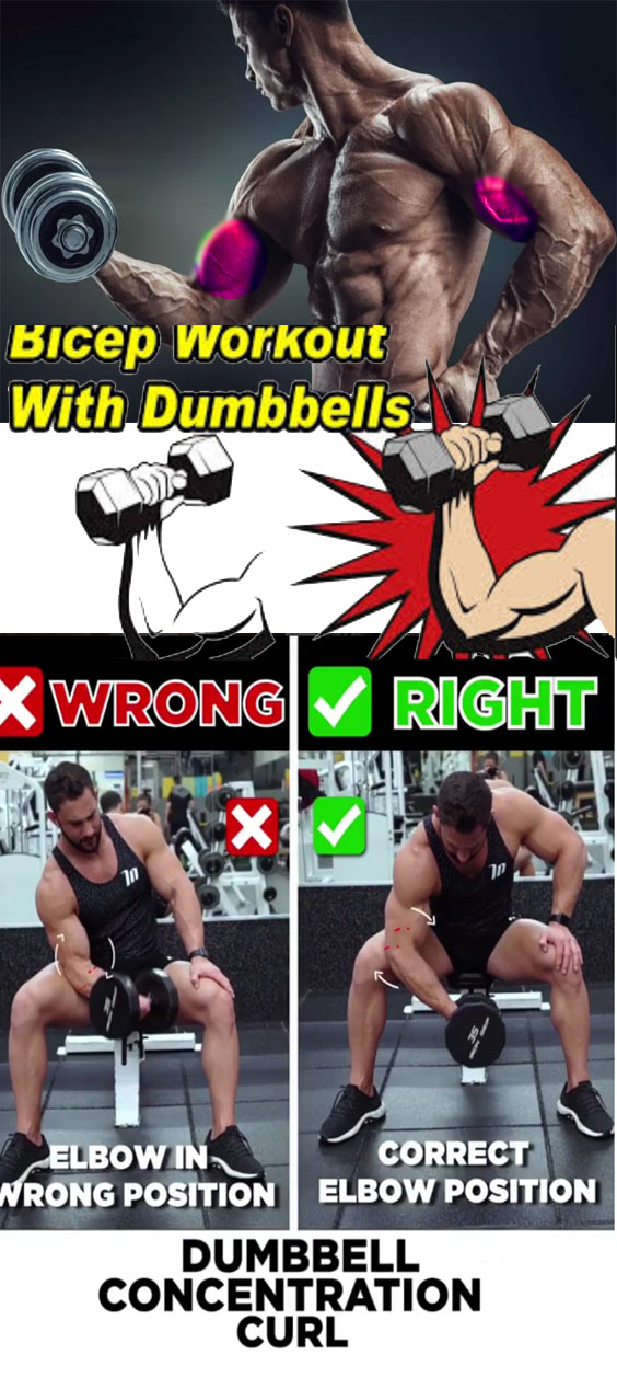 🚨DUMBBELL CONCENTRATION CURL ❌WRONG VS ✅RIGHT
