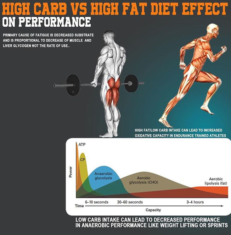 LOW CARB & HIGH CARB DIET