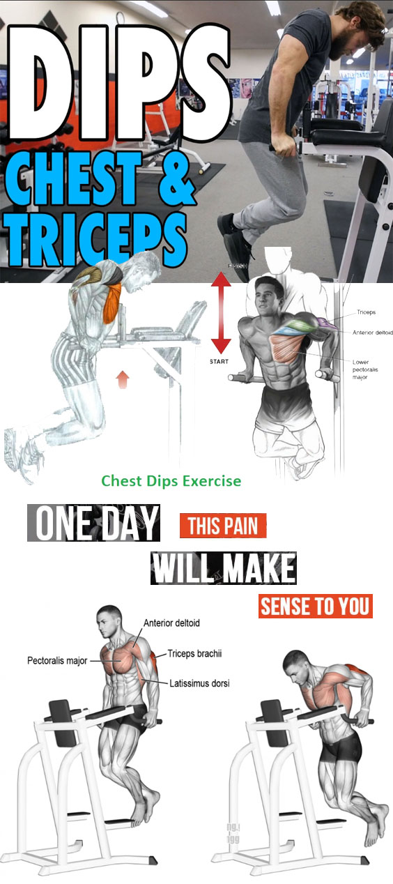 Triceps & Chest Dips