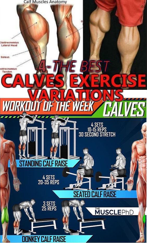 How to Pragram Workout Calves