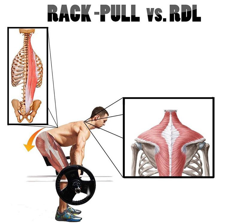 How to Rack Pulls