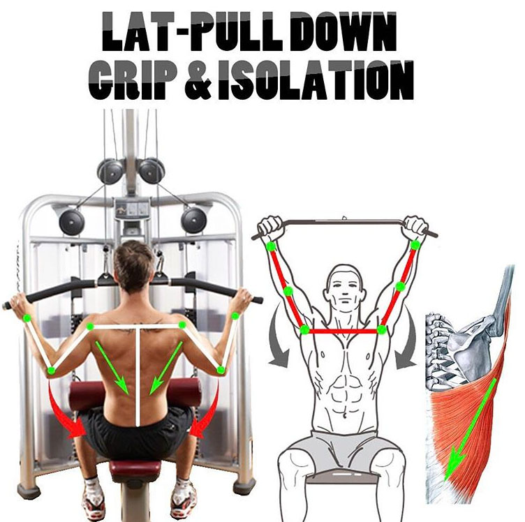 LAT-PULL DOWN GRIP & ISOLATION