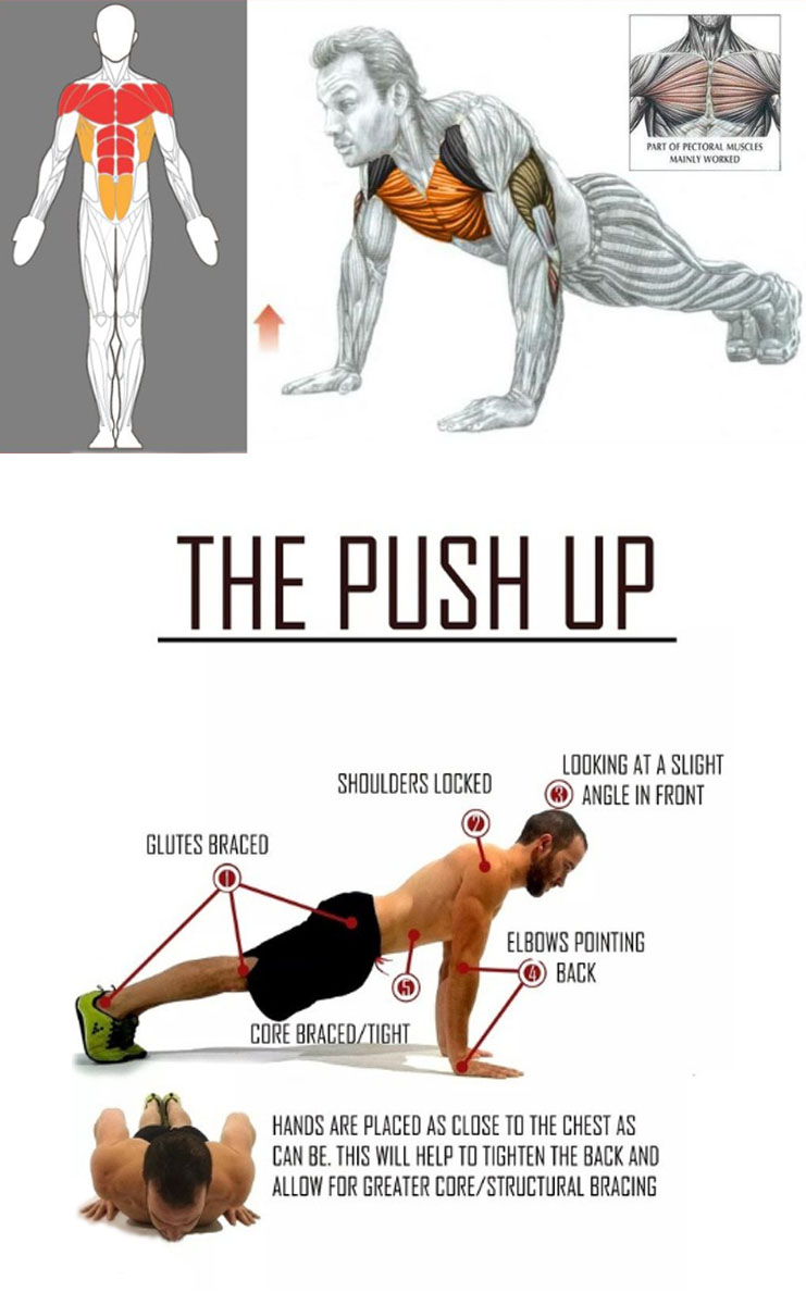 Walk Out Push Ups