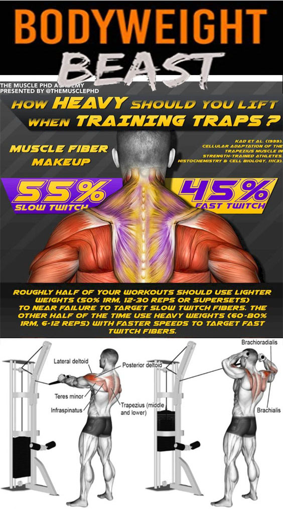 Training Traps