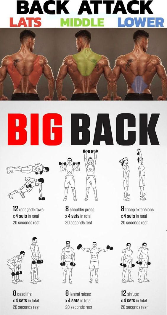 BACK ATTACK & LATS & MIDDLE & LOWER