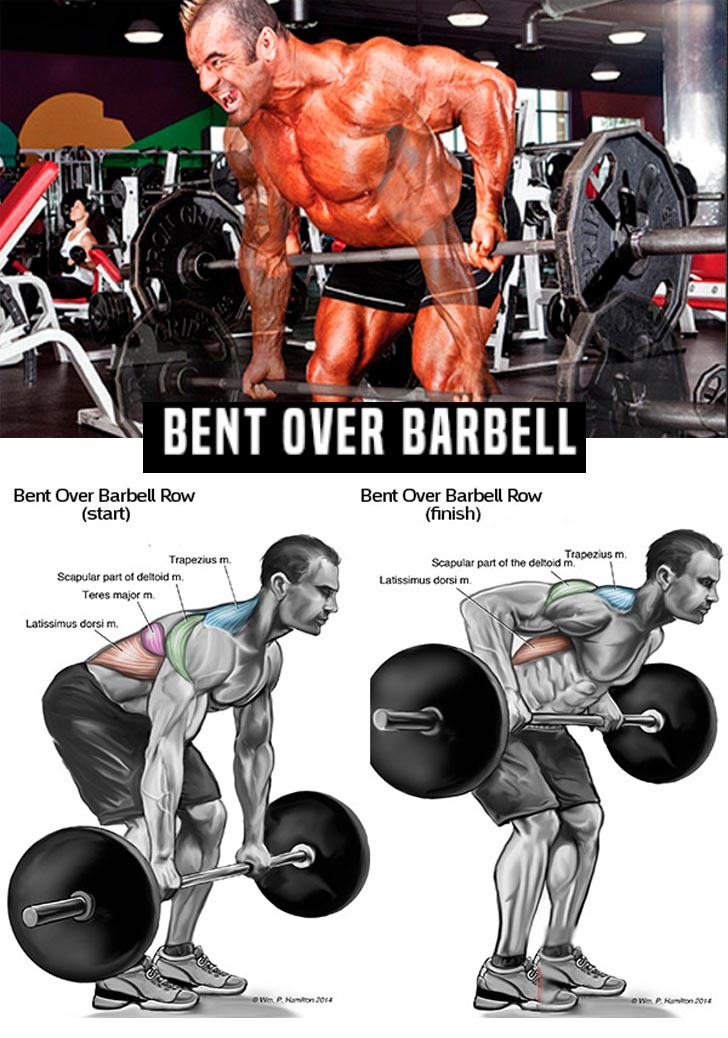 BARBELL BENT ROW