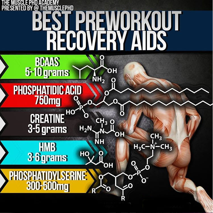 BEST PREWORKOUT RECOVERY AIDS