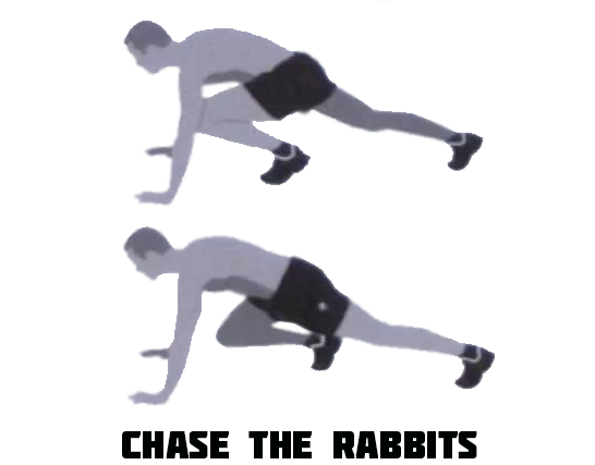 How to Chase the Rabbits