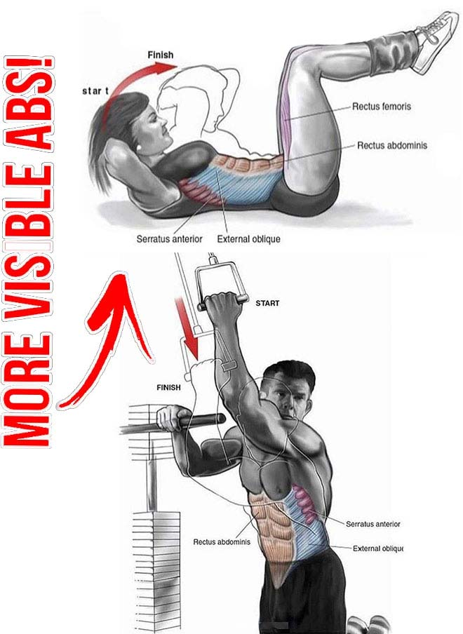 Abs Workout Guide