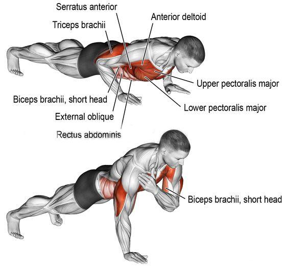 Opposite push-ups
