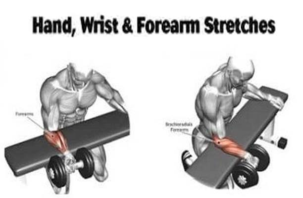 how to forearm stretching