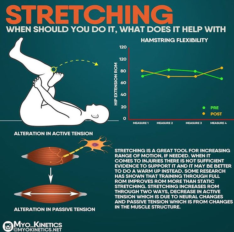 STRETCHING WHEN SHOULD YOU DO IT, WHAT DOES IT HELP WITH HAMSTRING FLEXIBILITY