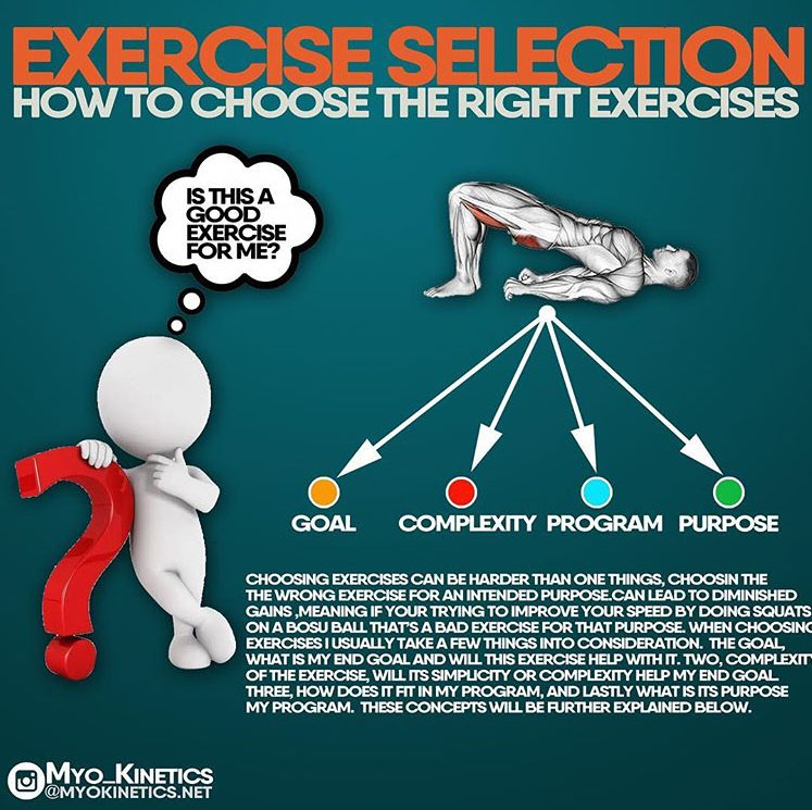 EXERCISE SELECTION & HOW TO CHOOSE THE RIGHT EXERCISES