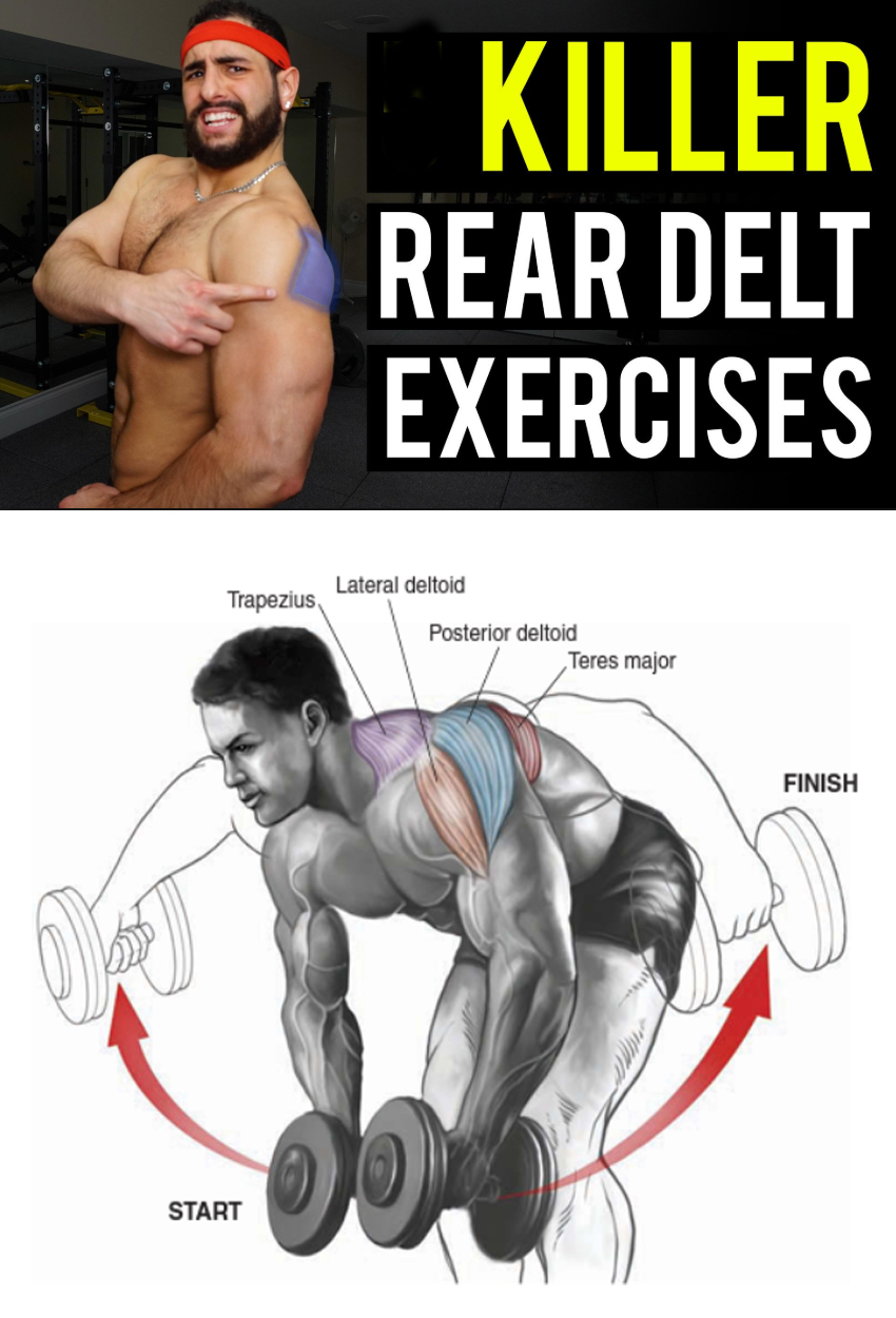 Rear Delt Raise
