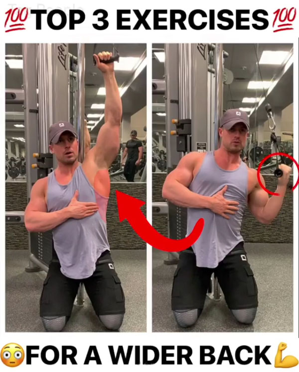 3 TOP GAIN BACK EXERCISES