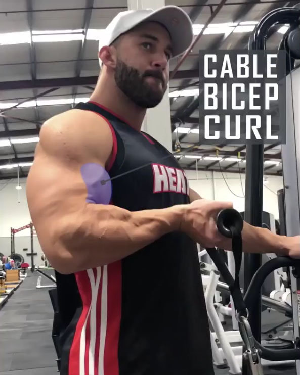 ARM CABLE CURL