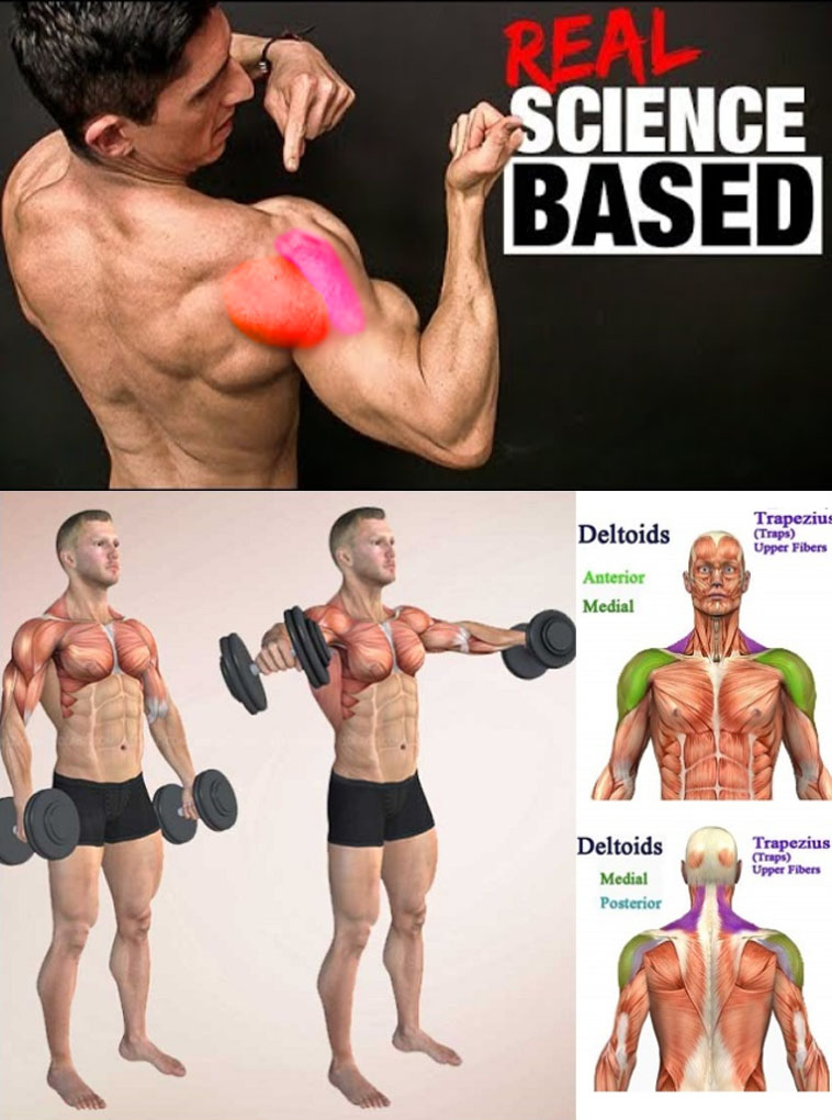 shoulder exercise real science based