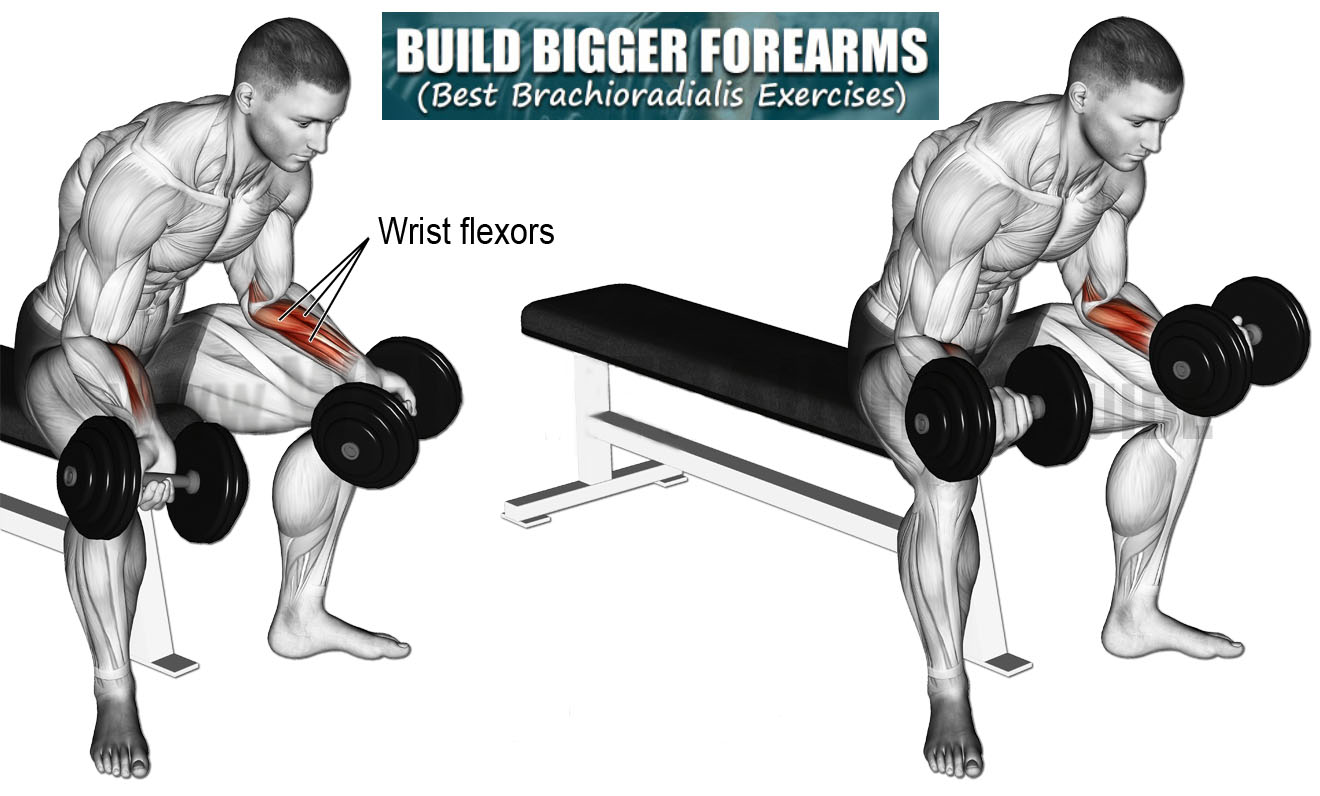 Dumbbell wrist flexion