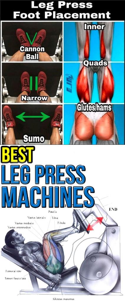 PLATE LOADED LEG