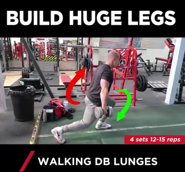 Walking DB Lunges