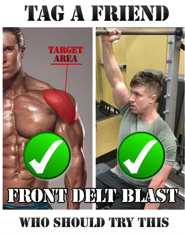 Smith Front Delt Press