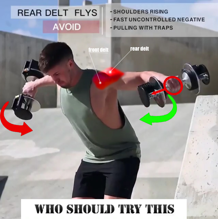 REAR DELT FLYS