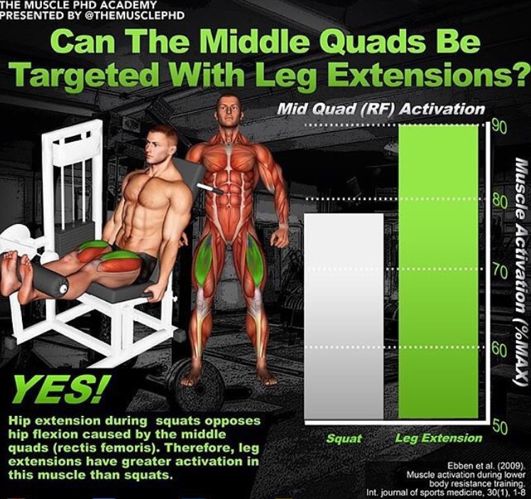 How to Quads Leg Extensions