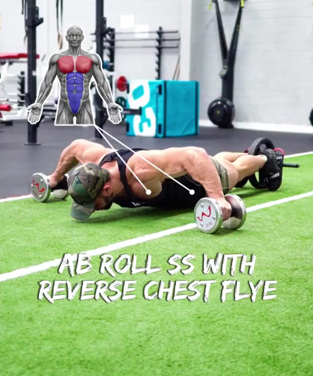 AB ROLL SS WITH REVERSE CHEST FLYE