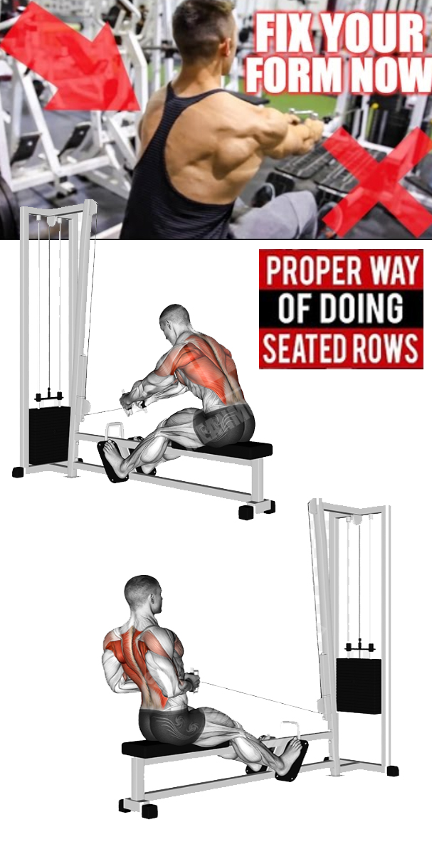 SEATED ROWS FORM