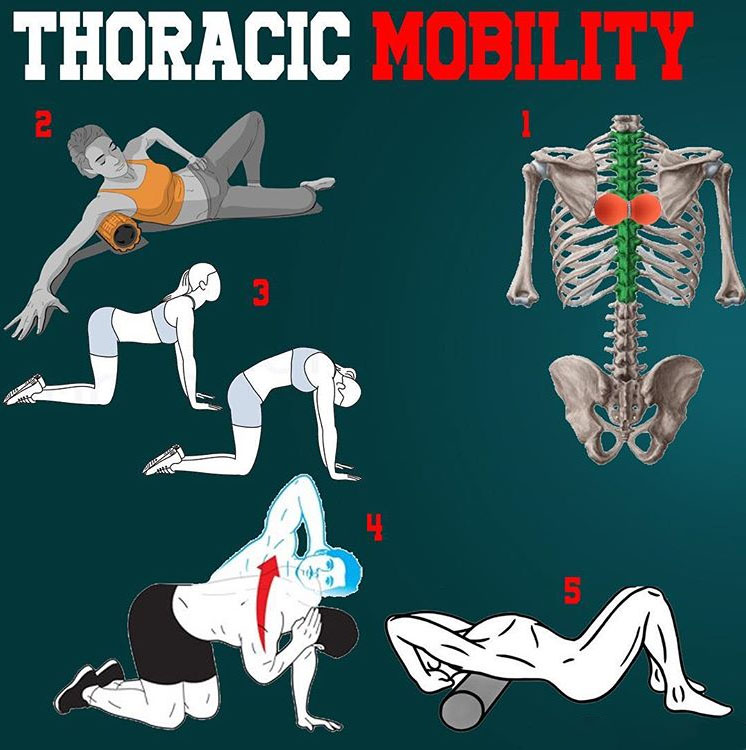 IMPROVE THORACIC MOBILITY