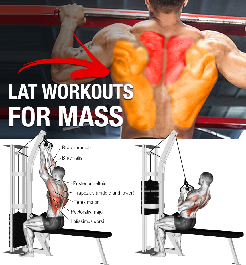 DOUBLE HAND LAT PULLDOWN
