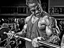 barbell curl workout