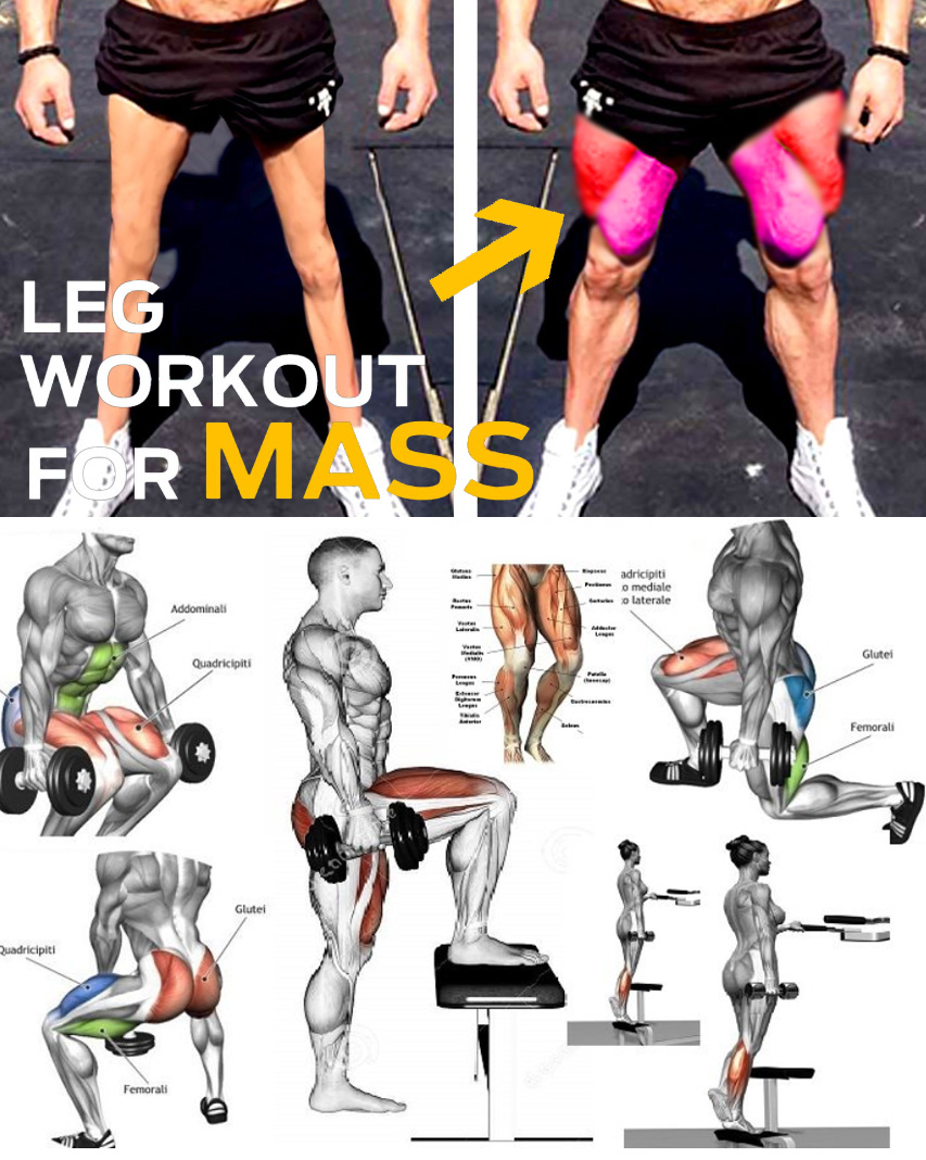 Legs Workout for Mass