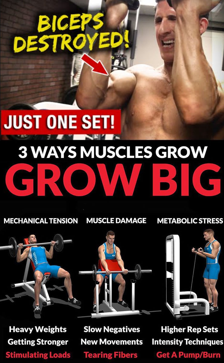 3 WAYS YOUR MUSCLES GROW BIG