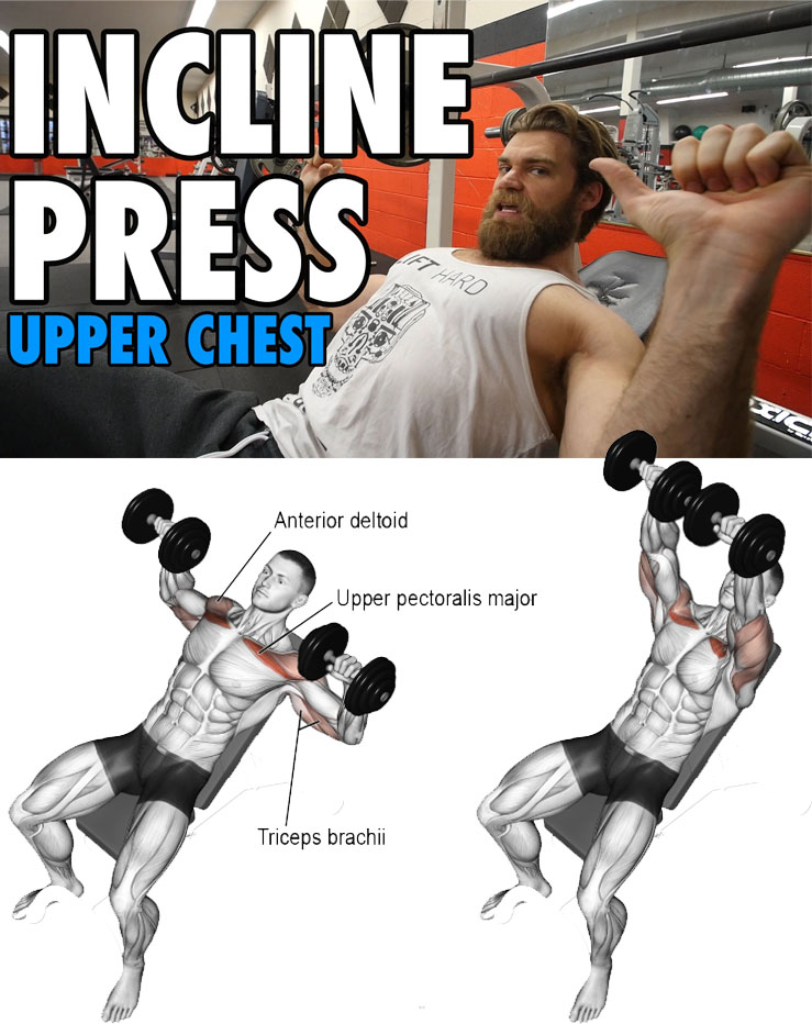INCLINE PRESS | UPPER CHEST