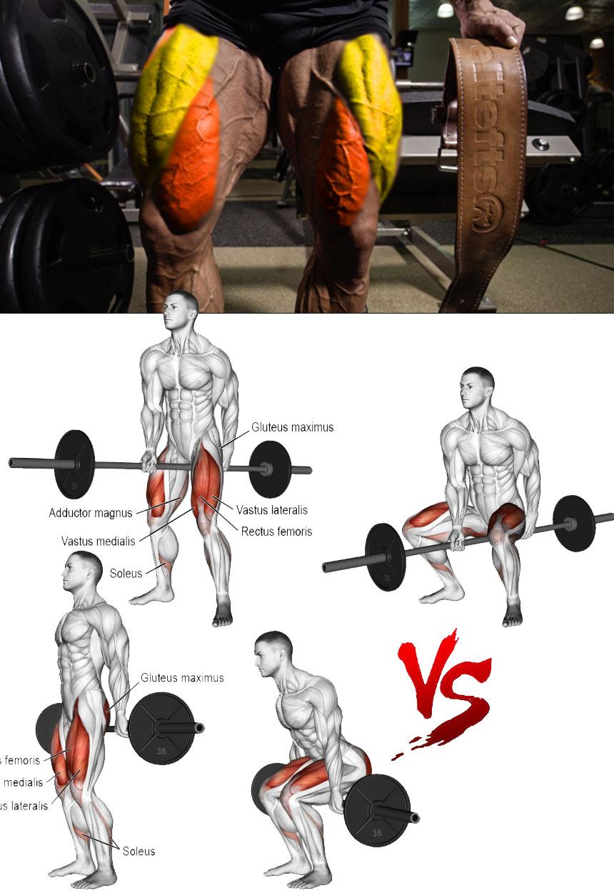 squats experiences
