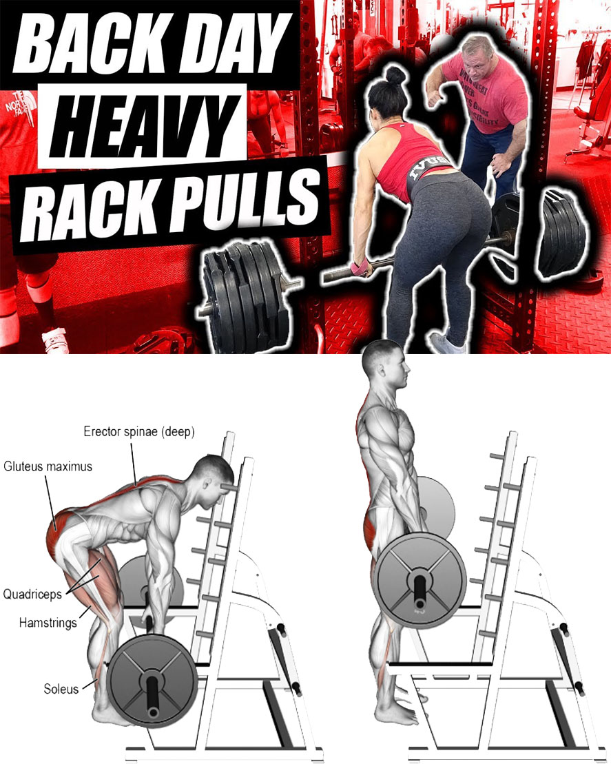 "DEADLIFT ""Rack Pulls"""