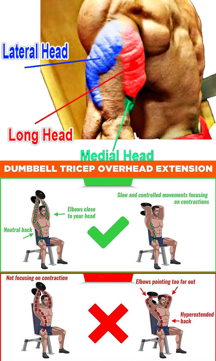 DB OVERHEAD EXTENSION