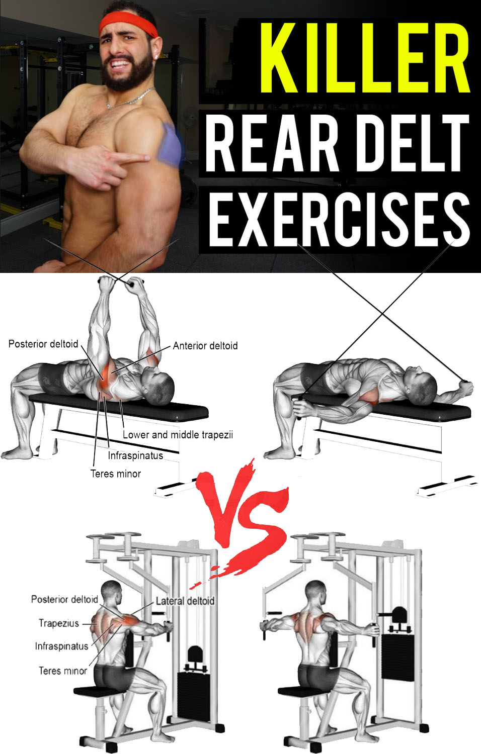 killer rear delt exercises
