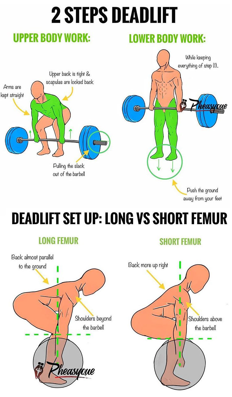 HOW TO LOWER THE BARBELL DEADLIFT