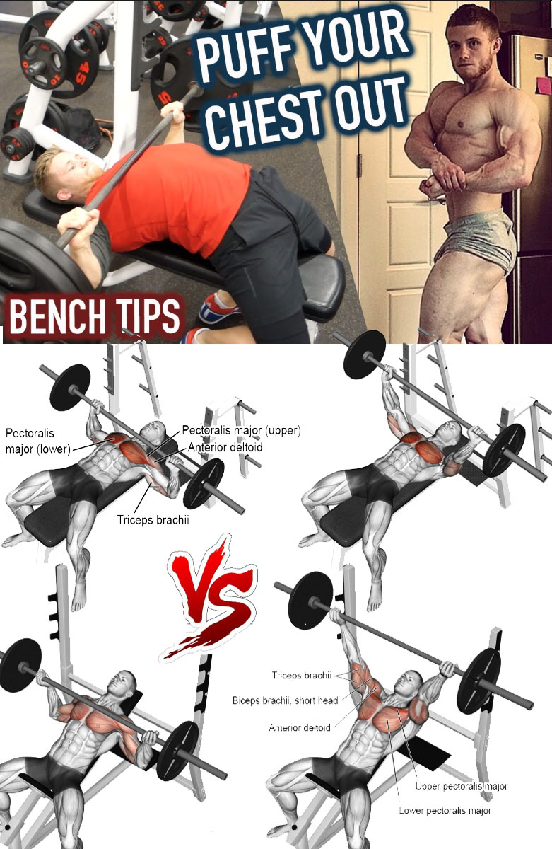 BENCH TIPS PUFF CHEST OUT