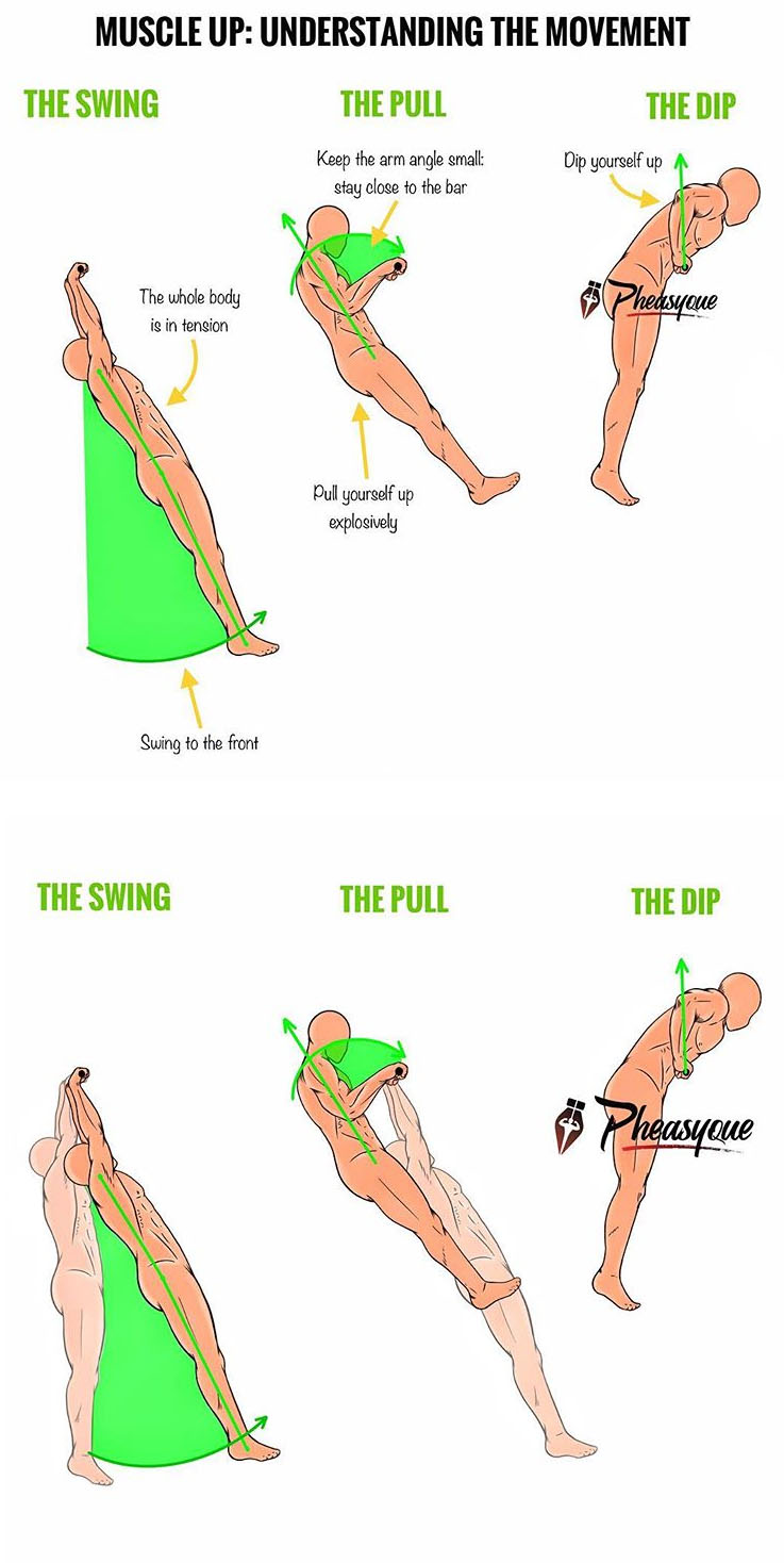 THE MUSCLE UP: UNDERSTANDING THE MOVEMENT