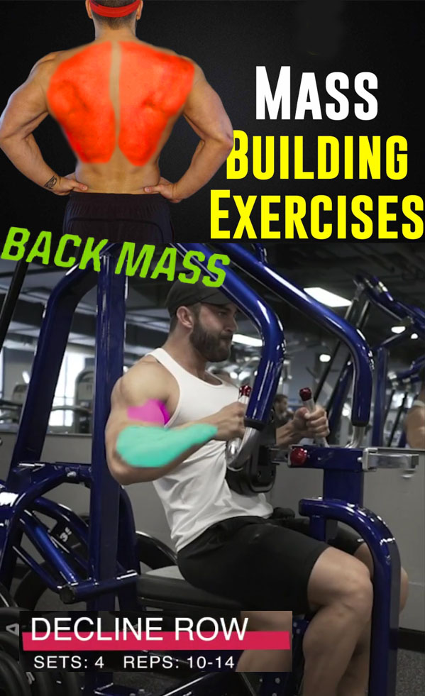 BACK DECLINE ROW