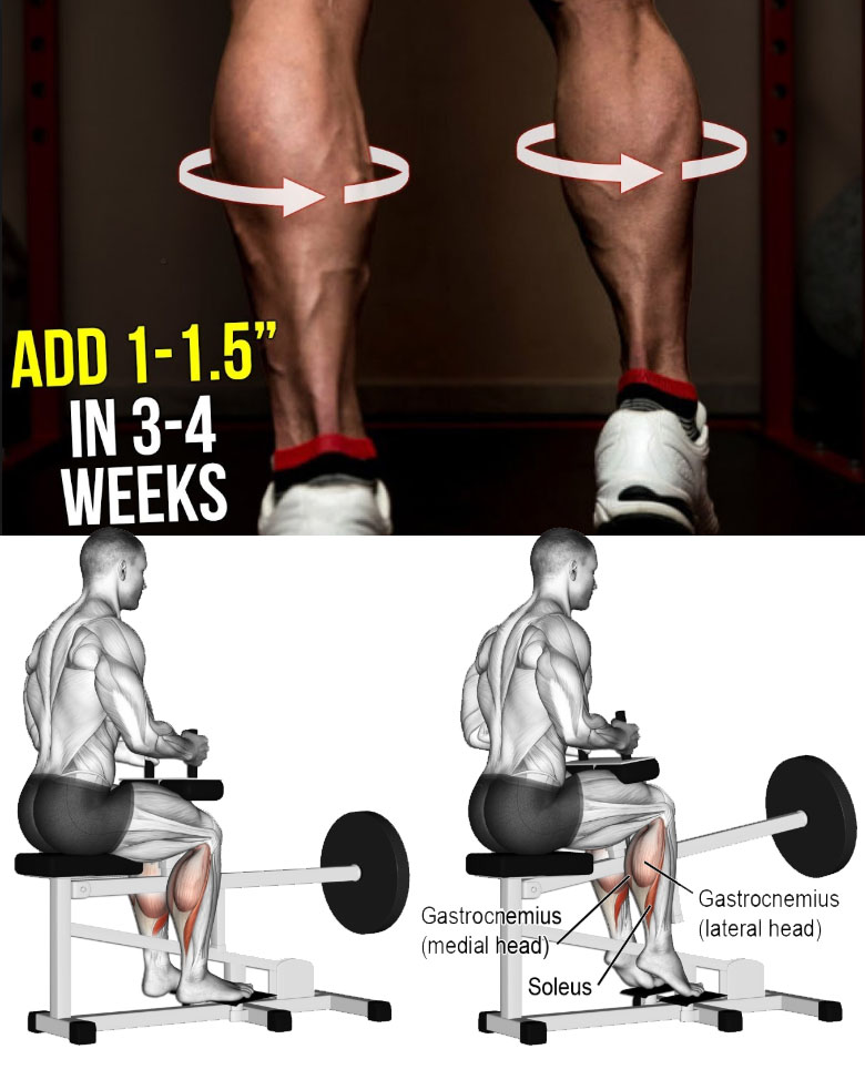 CALVES EXERCISES