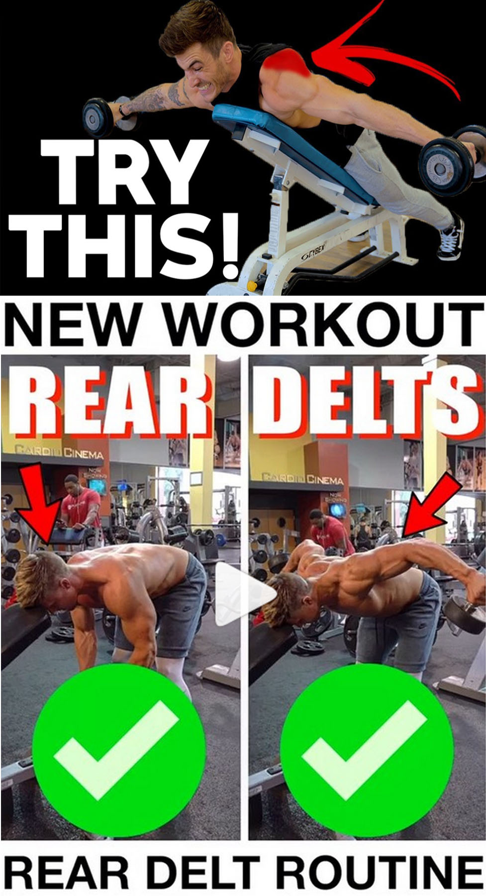 Isolation Rear Delt Dumbbell Flyes
