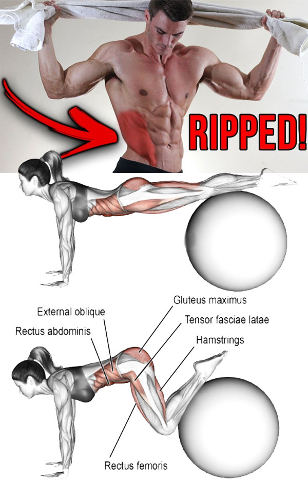 Exercise Ball Jackknife