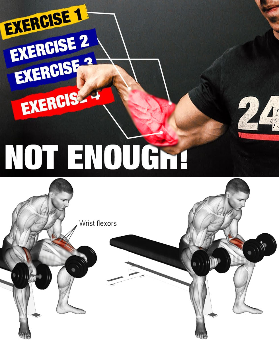 Training Forearms