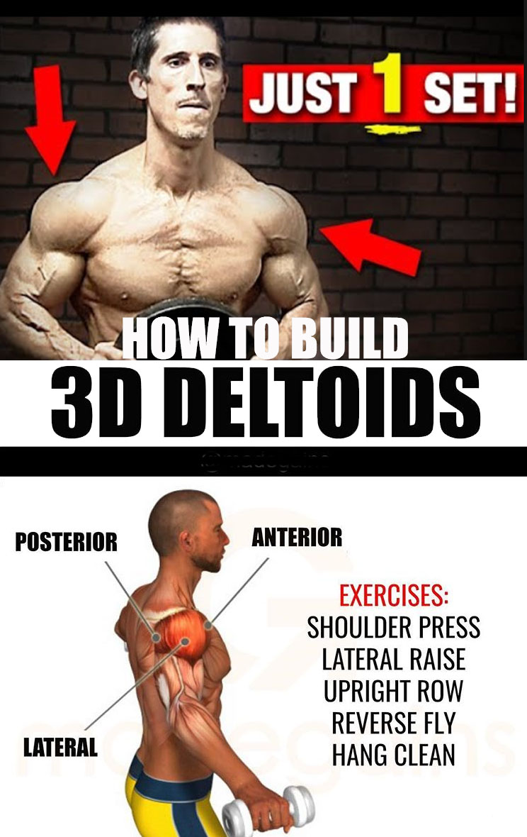 how to build 3d deltoids