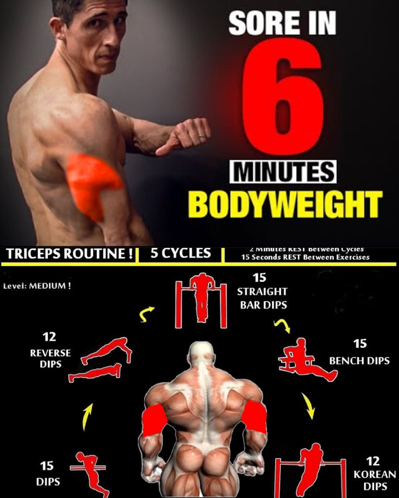 Triceps Routine