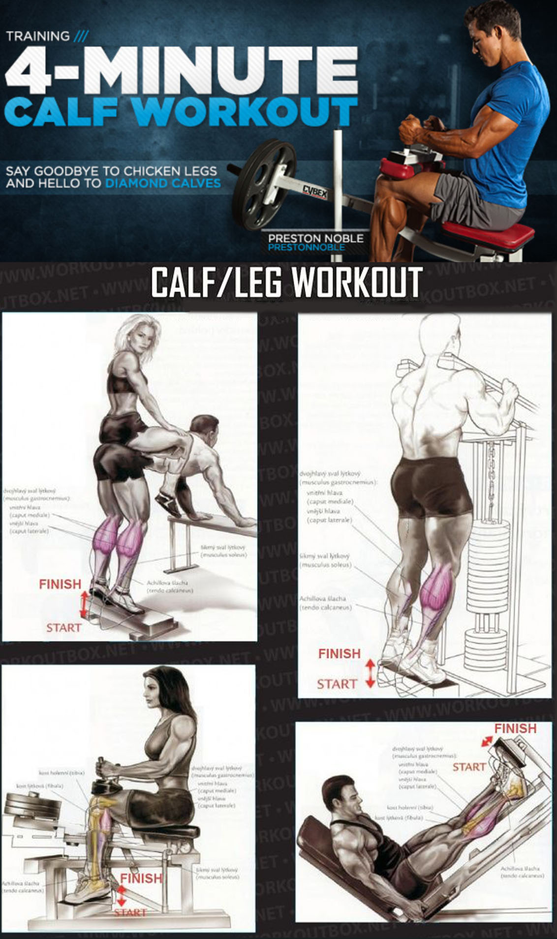 4 MINUTE CALF WORKOUT